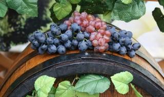 Cele mai alese vinuri moldovenești au fost expuse la loc de cinste chiar în inima Chișinăului, scrie publika.md. Și asta deoarece astăzi începe Ziua Națională a Vinului, care a revenit în acest an în Piața Marii Adunări Naționale. La eveniment vor participa 40 de producători de vinuri, care vor pune la dispoziţia vizitatorilor circa 400... Post-ul Ziua Națională a Vinului, marcată în Piața Marii Adunări Naționale apare prima dată în CANAL 3.