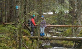 Metodă ECO de a face genuflexiuni – mergi în pădure şi ridici un copac.Nu este glumă, este isprava unei femei din Suedia care și-a găsit un nou hobby. Foto: bp.blogspot.com Post-ul Hobby-ul bizar al unei femei din Suedia apare prima dată în CANAL 3.